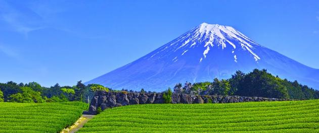 静岡・焼津・浜松で人気な稼げるデリヘルはココだ!求人情報まとめ!
